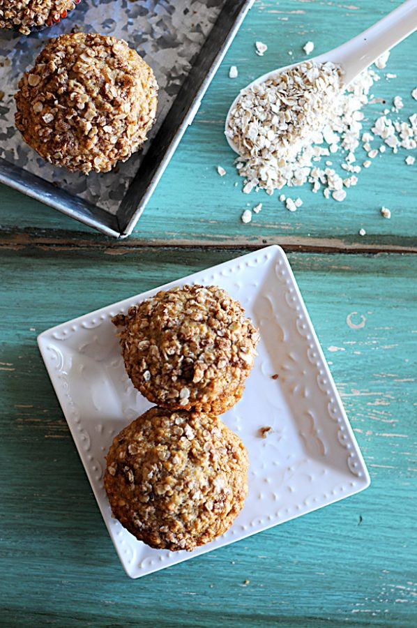 Healthy Oatmeal Muffins Applesauce  Applesauce Oatmeal Streusel Muffins from Dine and Dish