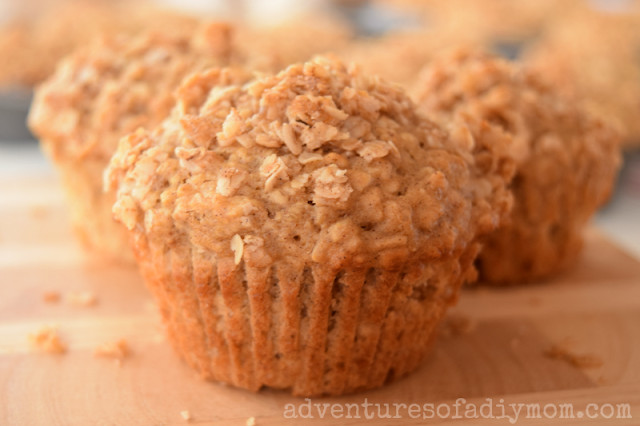 Healthy Oatmeal Muffins Applesauce  Healthy Applesauce Oat Breakfast Muffins Recipe