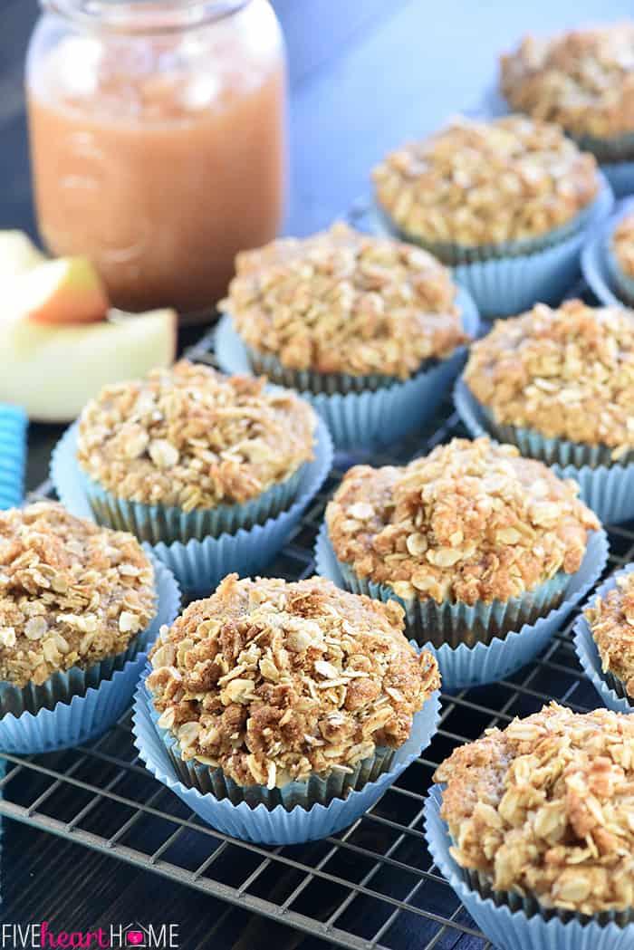 Healthy Oatmeal Muffins Applesauce  oat applesauce muffins