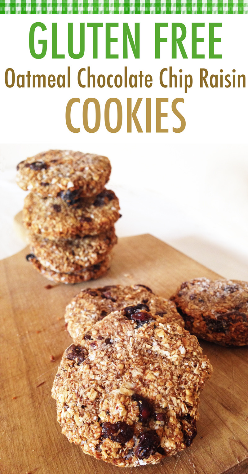 Healthy Oatmeal Raisin Chocolate Chip Cookies  banana oatmeal raisin cookies no flour