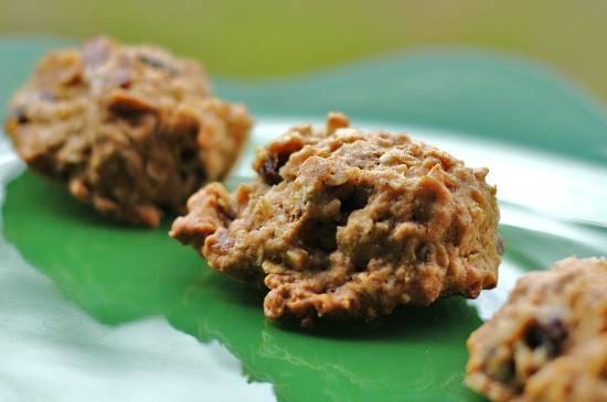 Healthy Oatmeal Raisin Cookies Applesauce  10 Best Healthy Oatmeal Cookies Applesauce Recipes