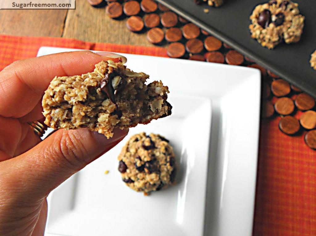 Healthy Oatmeal Raisin Cookies Applesauce  Healthy Oatmeal Raisin Cookies No Sugar Added