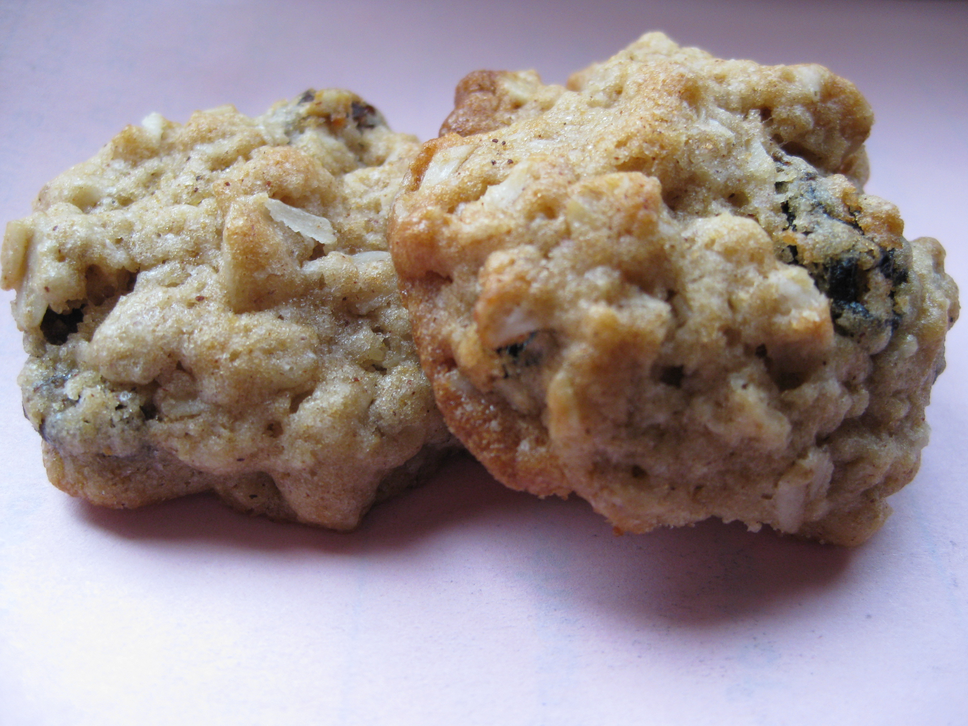 Healthy Oatmeal Raisin Cookies  Healthy Oatmeal Raisin Cookies