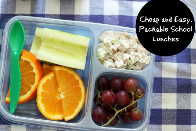 Healthy Packable Lunches  5 Cheap & Easy Packable School Lunches