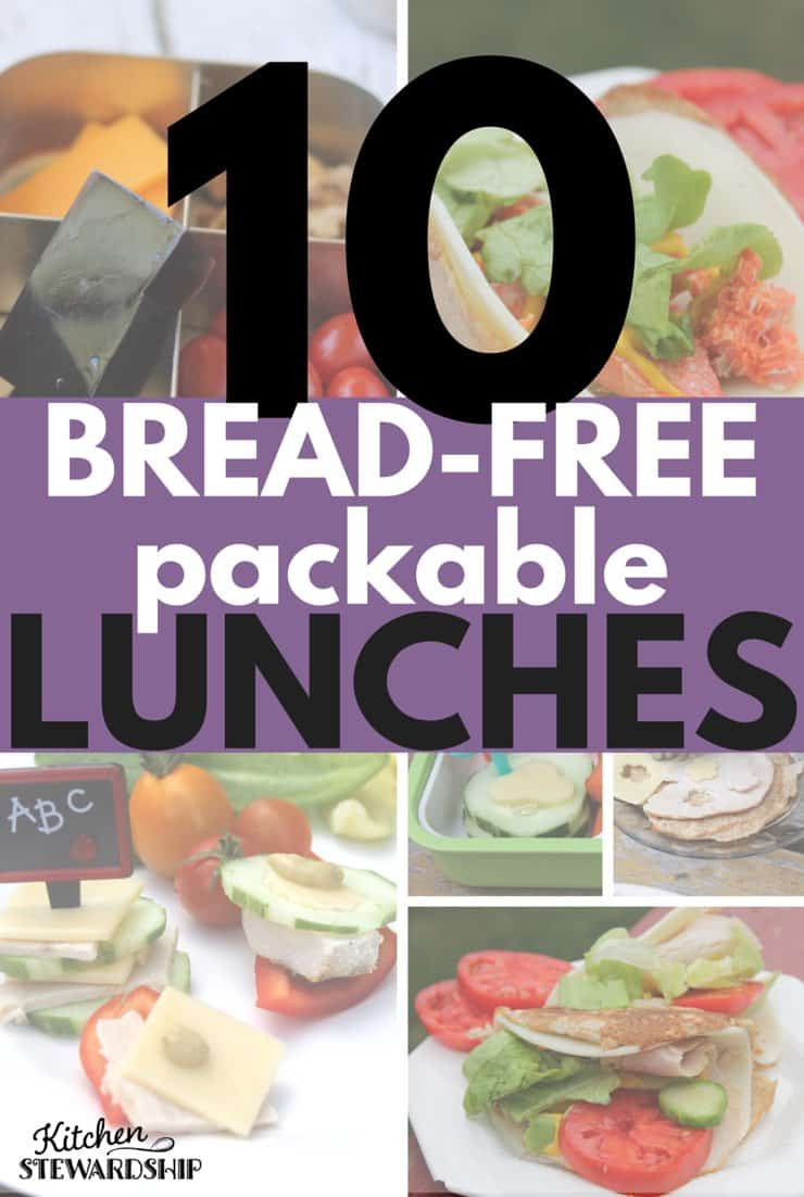 Healthy Packable Lunches  Healthy Foods for Lunch 10 Packed Bread Free Sandwiches
