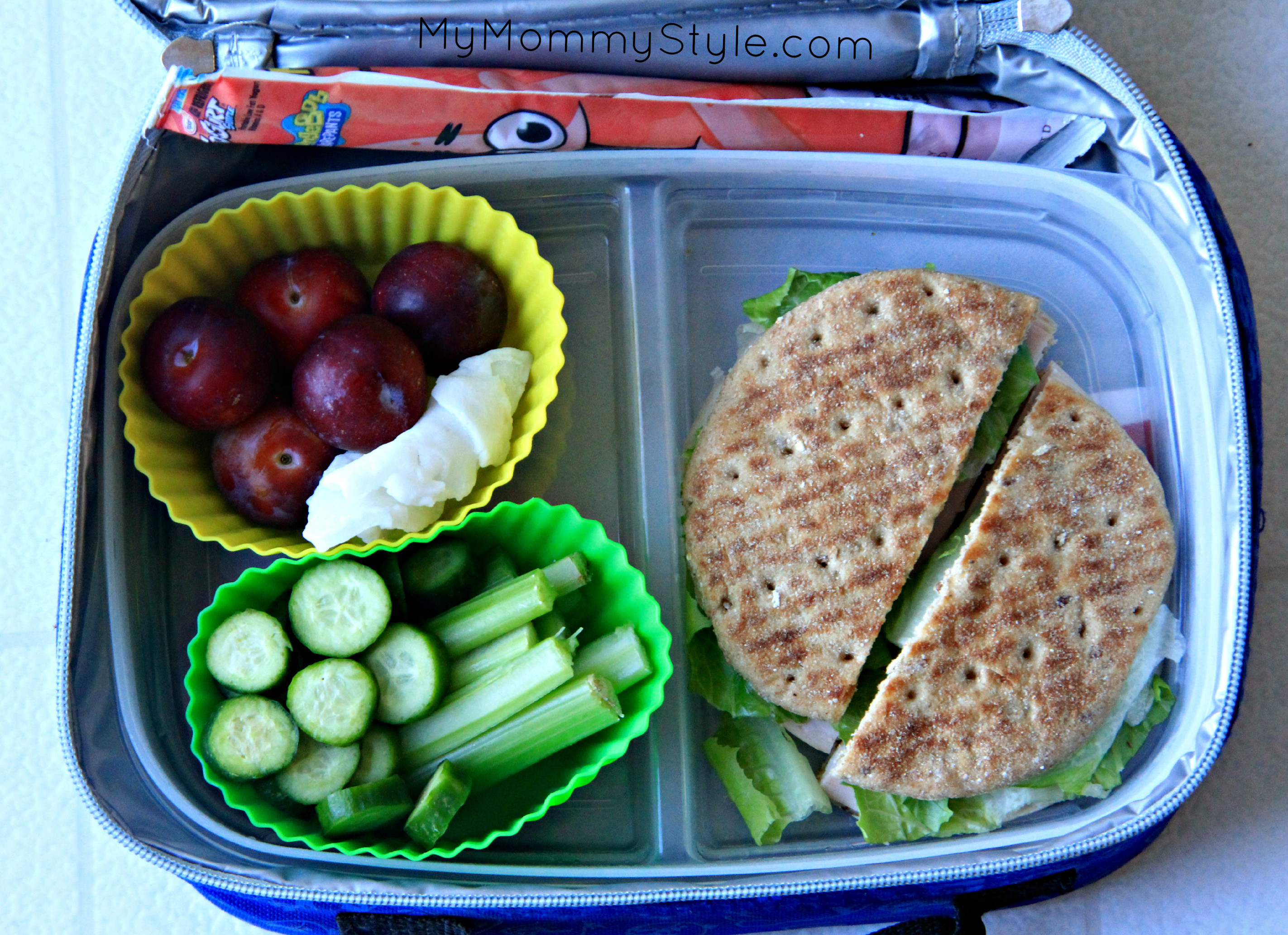 Healthy Packed Lunches For School  Healthy Lunch Box Lunches CCE Suffolk County Family