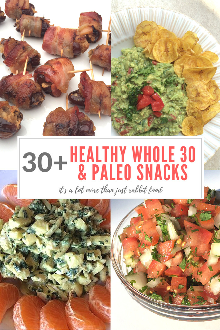 Healthy Paleo Snacks  30 Healthy Whole 30 & Paleo Snacks