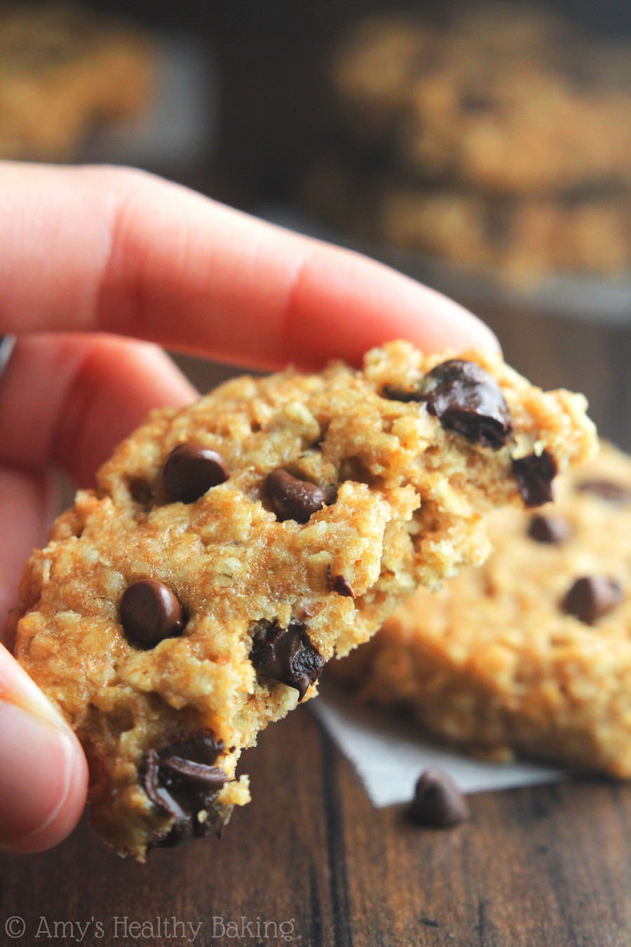 Healthy Peanut Butter Oatmeal Chocolate Chip Cookies  Chocolate Chip Peanut Butter Oatmeal Cookies Recipe Video