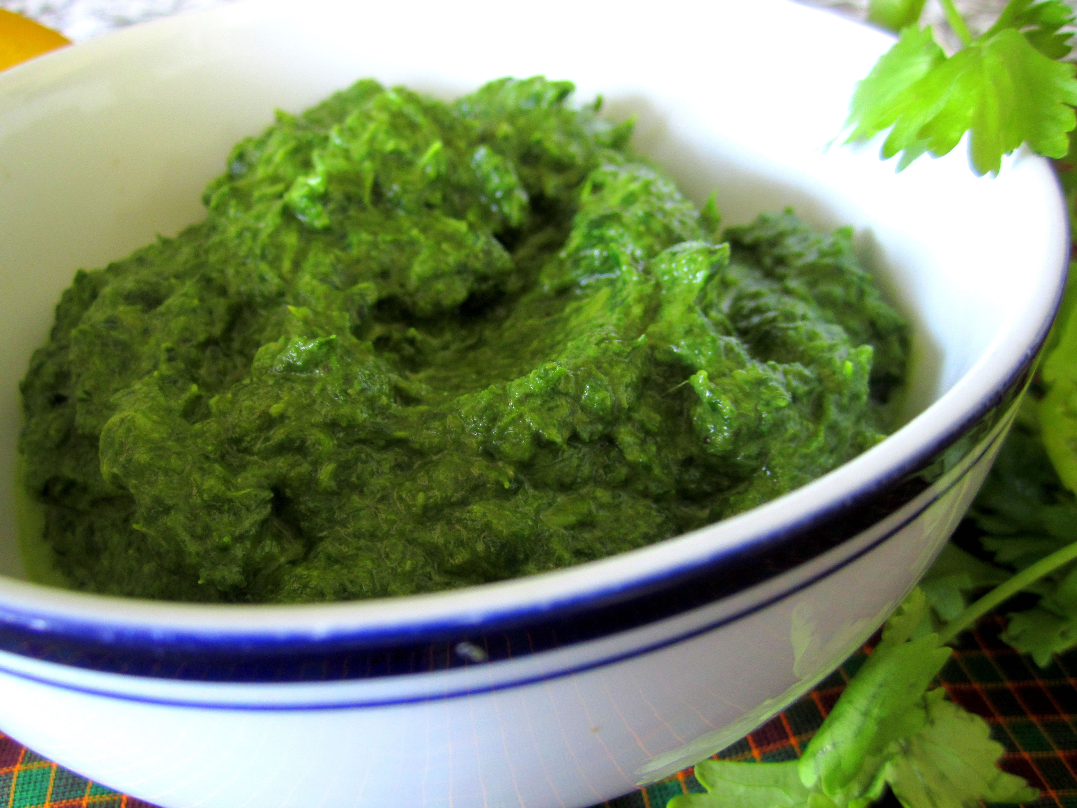 Healthy Pesto Sauce  88 Cheap and Healthy Lunch and Dinner Recipes