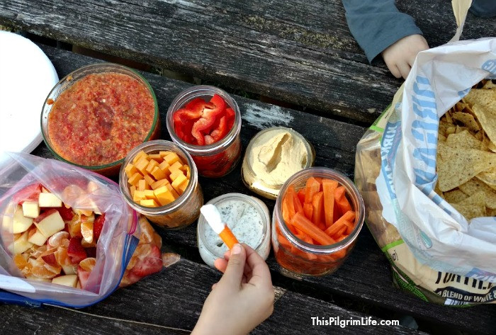 Healthy Picnic Snacks  Life is Too Short to Stay Indoors 30 Healthy Grab and Go