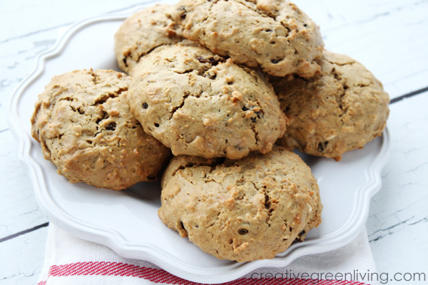 Healthy Protein Oatmeal Cookies  Gluten Free Oatmeal Raisin Protein Cookies and Giveaway