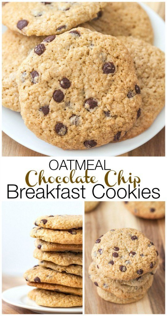 Healthy Protein Oatmeal Cookies  High Protein Healthy Oatmeal Cookies Recipe — Dishmaps