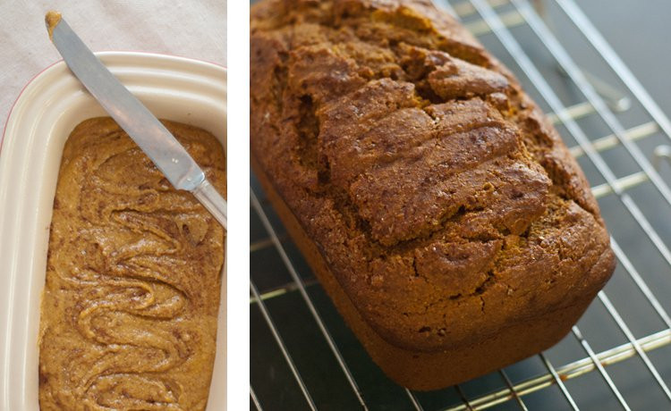 Healthy Pumpkin Bread Recipe  Honey Whole Wheat Pumpkin Bread Cookie and Kate