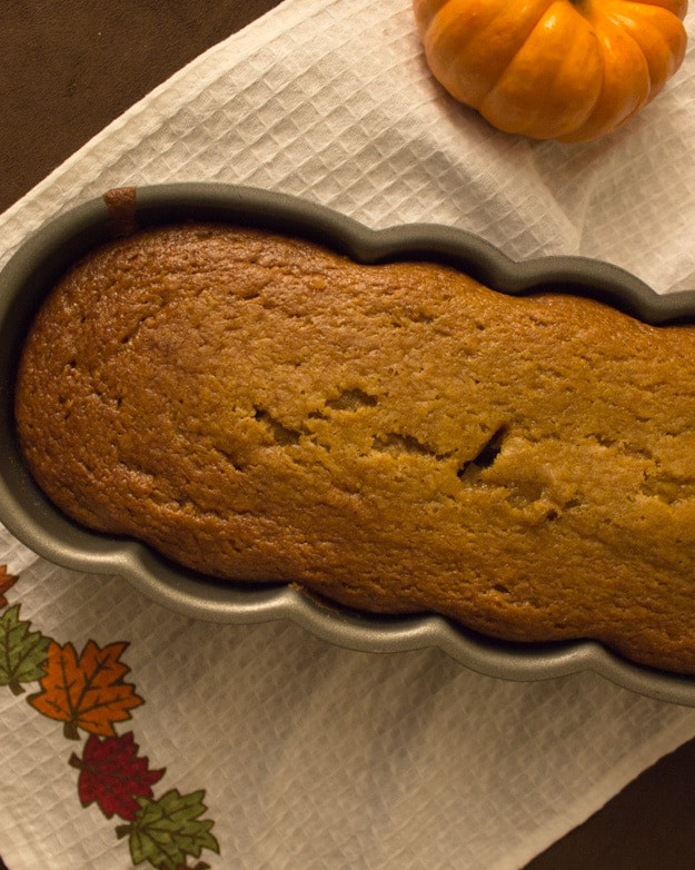 Healthy Pumpkin Bread With Applesauce  Applesauce pumpkin bread soft delicious great for sharing