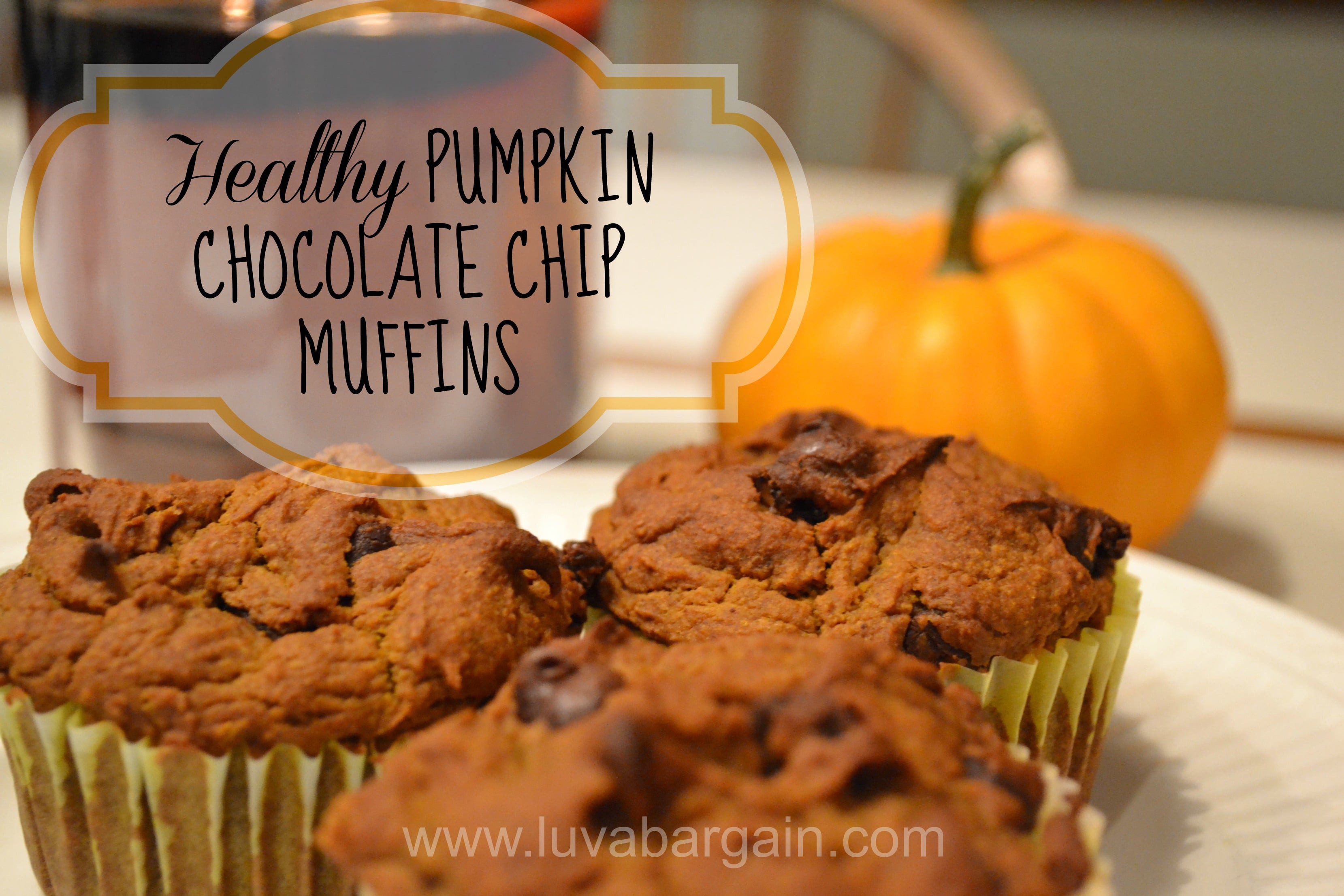 Healthy Pumpkin Chocolate Chip Muffins  Healthy Pumpkin Chocolate Chip Muffins