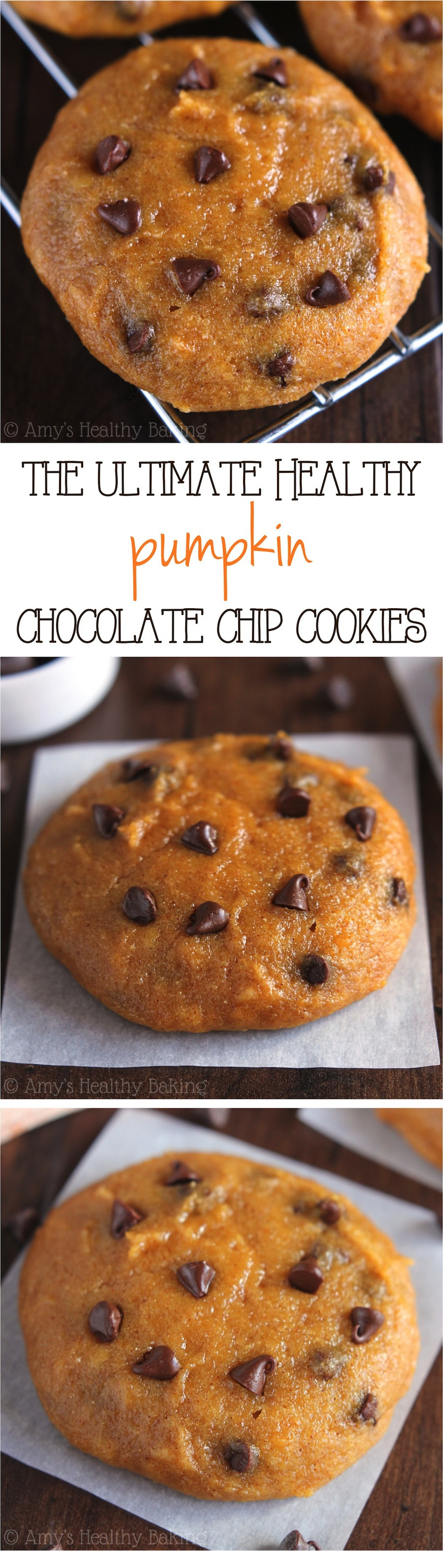 Healthy Pumpkin Cookie Recipes  Ultimate Healthy Soft & Chewy Pumpkin Chocolate Chip