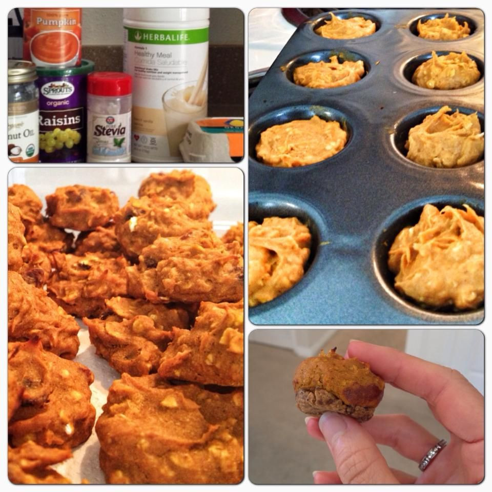 Healthy Pumpkin Cookies Applesauce  Healthy Pumpkin Raisin Cookies 1 cup pumpkin puree 1 4 cup