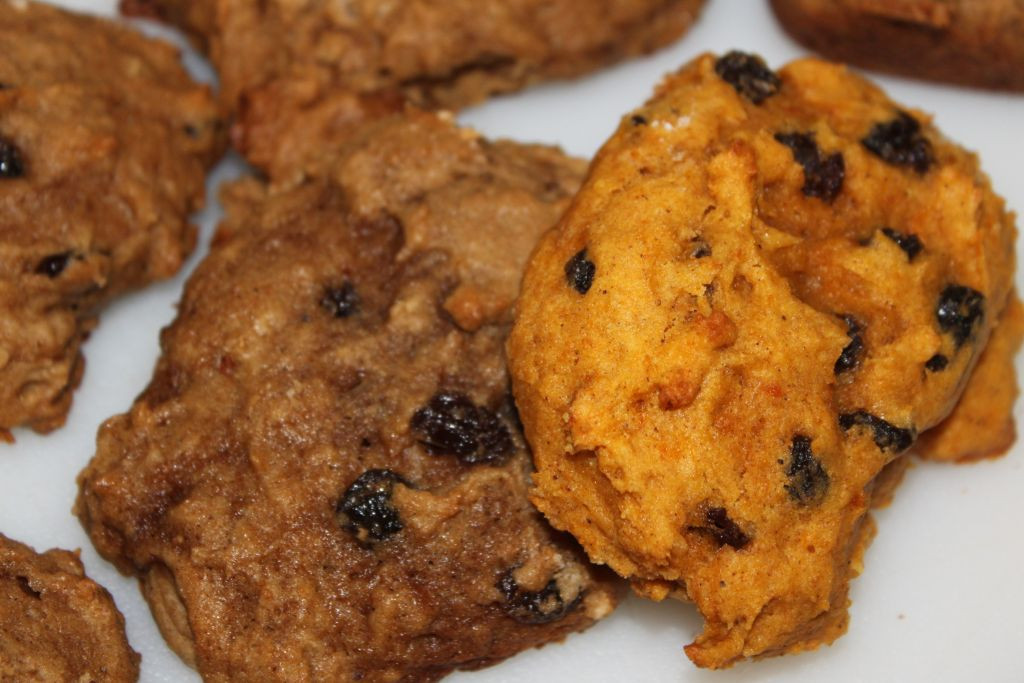 Healthy Pumpkin Cookies Applesauce  Easy Living the Hard Way Applesauce and Pumpkin Cookies yum
