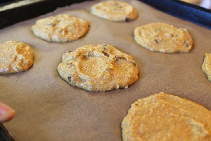 Healthy Pumpkin Cookies No Sugar  Healthy Date Pumpkin Cookies Recipe Paleo AIP Vegan