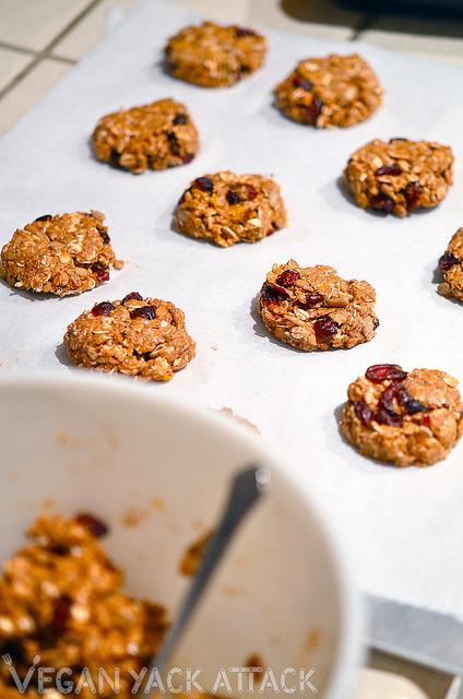 Healthy Pumpkin Cookies No Sugar  Healthy Pumpkin Cranberry Oatmeal Cookies – Vegan Yack Attack