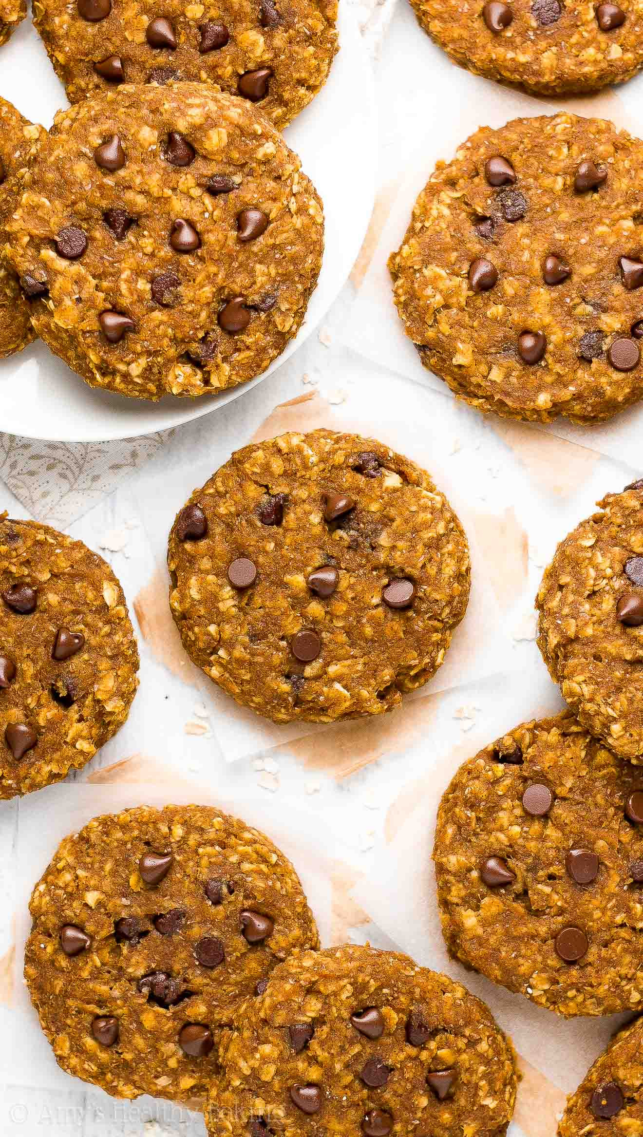 Healthy Pumpkin Oatmeal Chocolate Chip Cookies  Healthy Pumpkin Chocolate Chip Oatmeal Breakfast Cookies