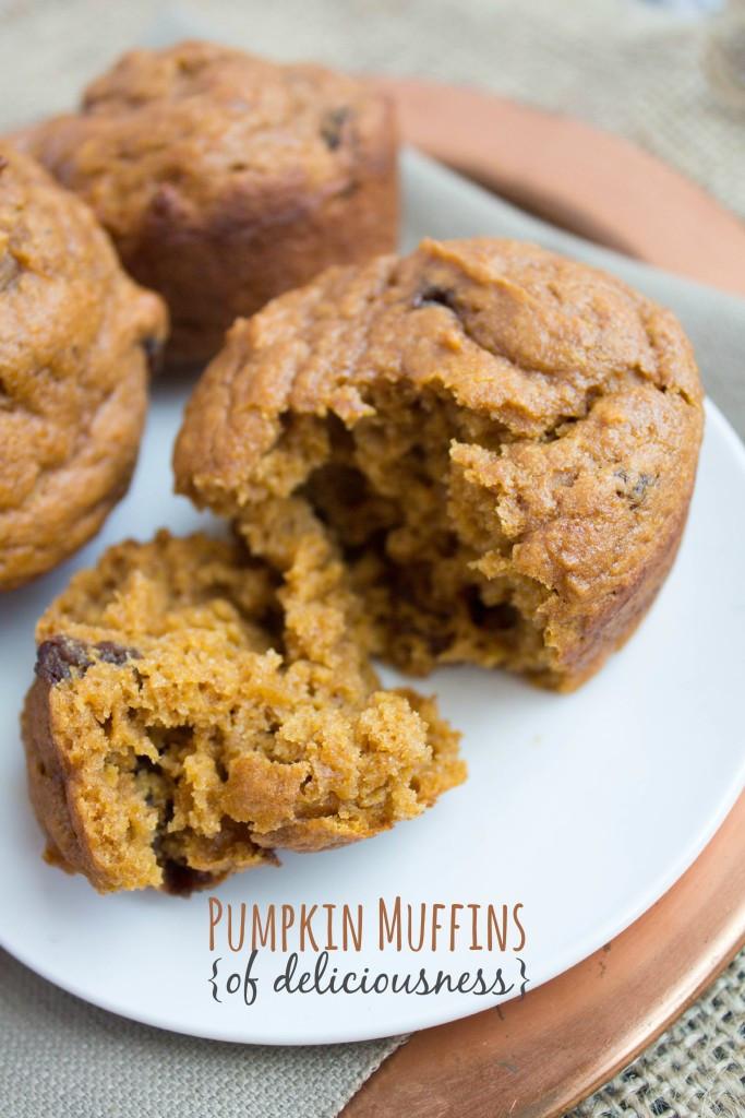 Healthy Pumpkin Recipes Easy  Healthy Pumpkin Muffins or Bread Recipe