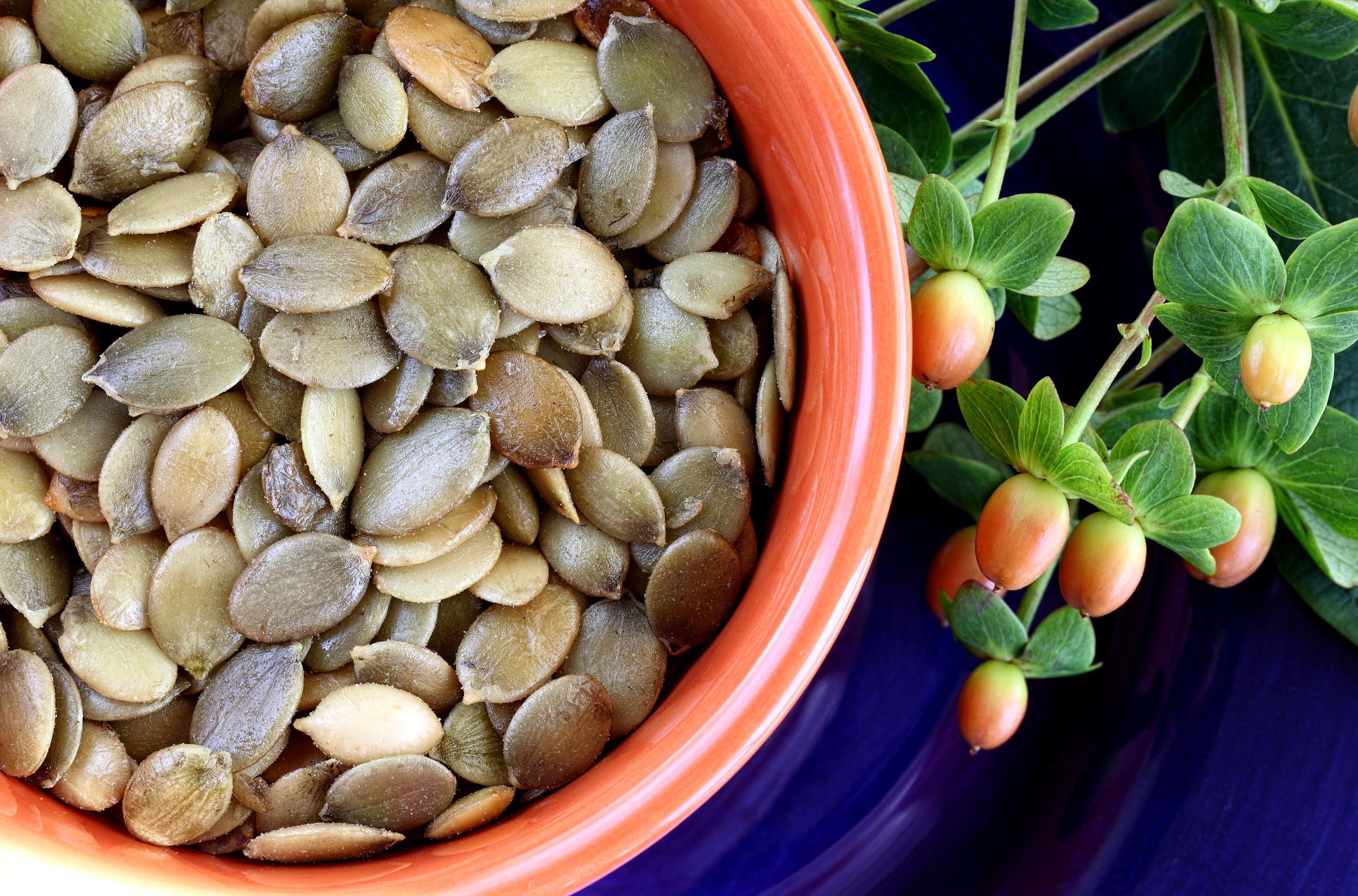 Healthy Pumpkin Seed Recipes  Healthy Pumpkin Seed Pesto Recipe