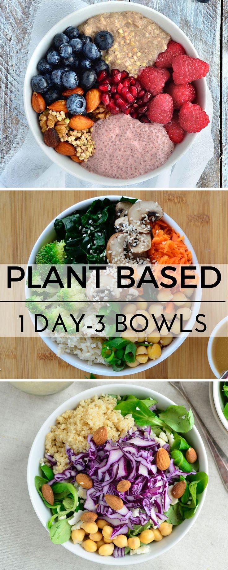 Healthy Raw Vegan Recipes  Plant based recipes vegan recipes healthy gluten free