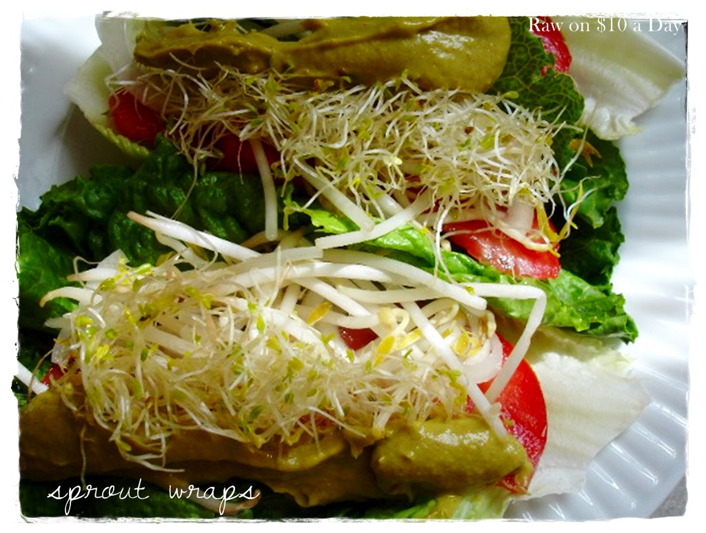 Healthy Raw Vegan Recipes  Sprout Recipes For Healthy Food You Can Grow The Window