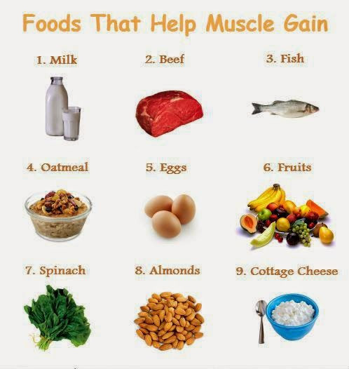 Healthy Recipes For Weight Loss And Muscle Gain  Muscle Building Foods To Build Muscle Fast – Quick Meal