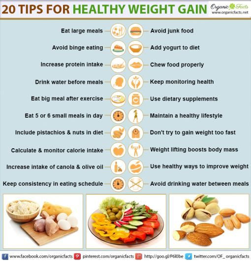 Healthy Recipes For Weight Loss And Muscle Gain  weightgaininfo Need to Gain Weight in 2019