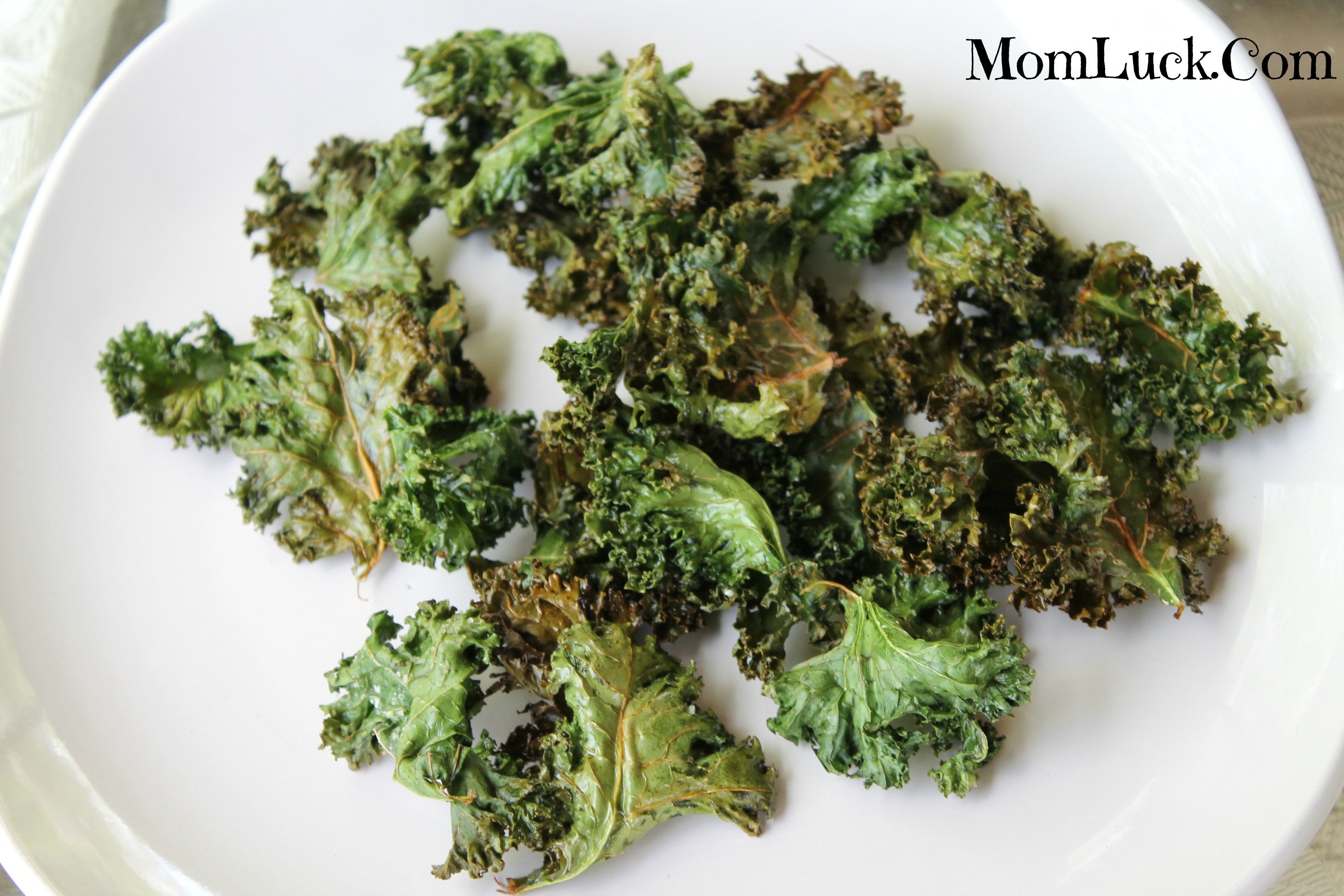 Healthy Recipes With Kale  Healthy Snack Recipes Like Kale Chips Recipe