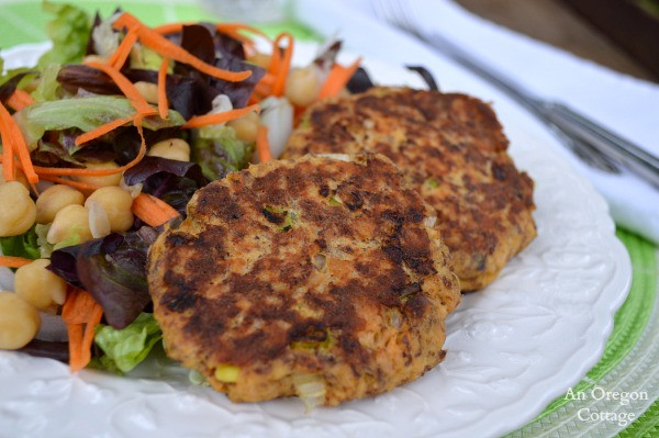 Healthy Salmon Patties the Best Ideas for Salmon Patties with Flax Gluten Free