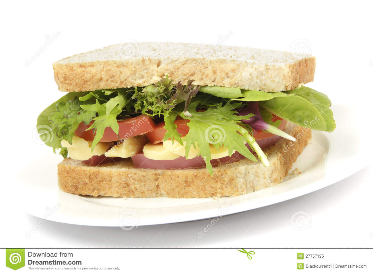 Healthy Sandwich Bread  Healthy Brown Bread Sandwich Plate Stock Image Image