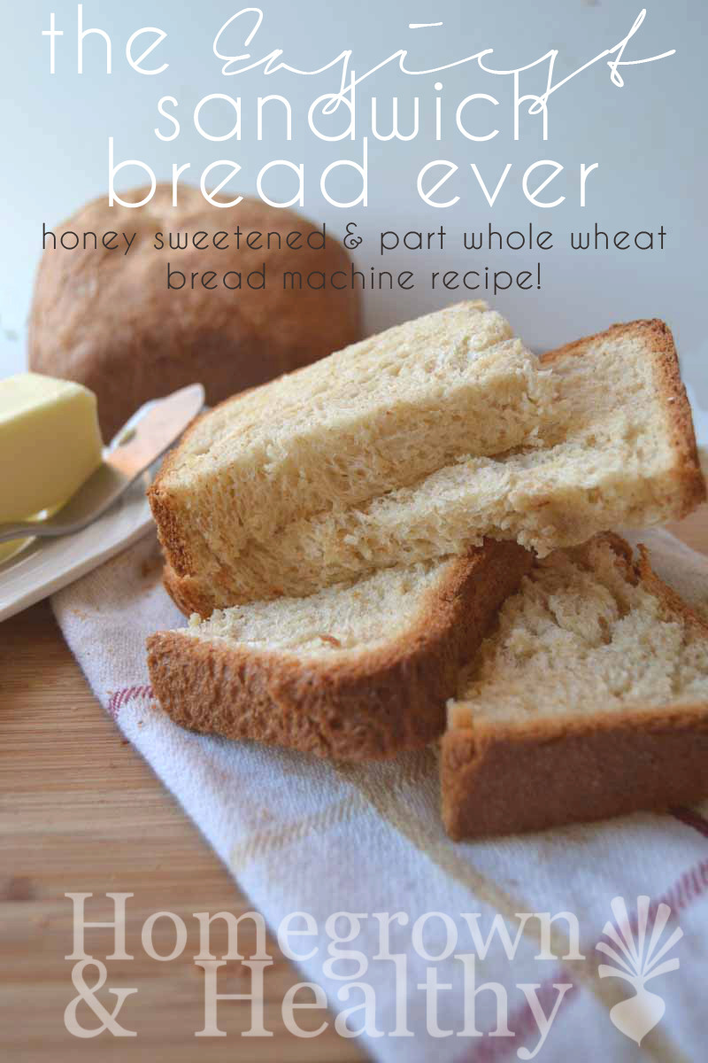 Healthy Sandwich Bread Recipe  Easy bread machine recipe Homegrown in the Valley
