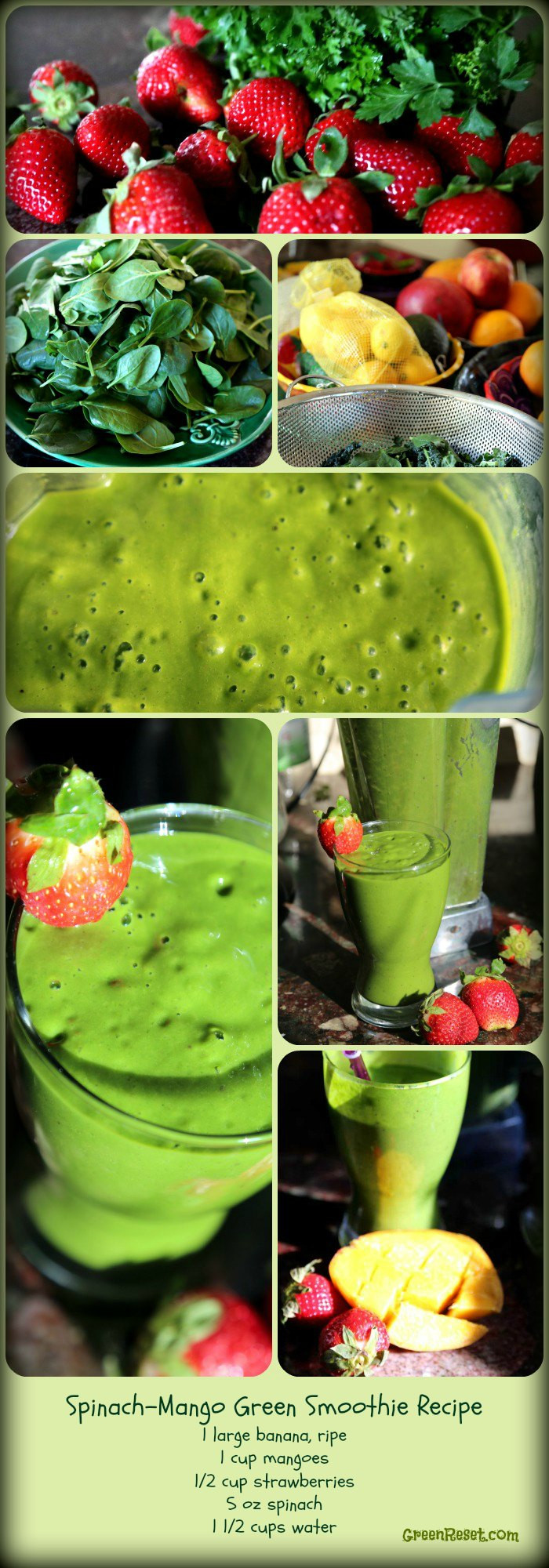 Healthy Smoothies With Spinach  10 Spinach Recipes for Smoothies