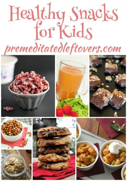 Healthy Snacks At Work  25 Healthy Snack Recipes for Kids
