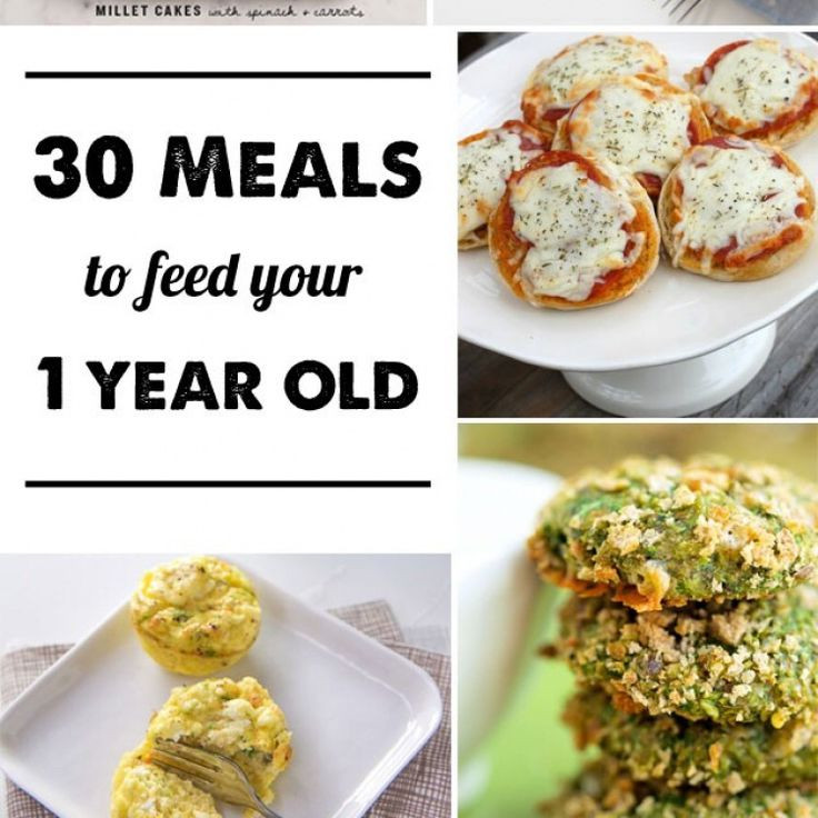 Healthy Snacks For 1 Year Old  30 Meal Ideas for a 1 year old