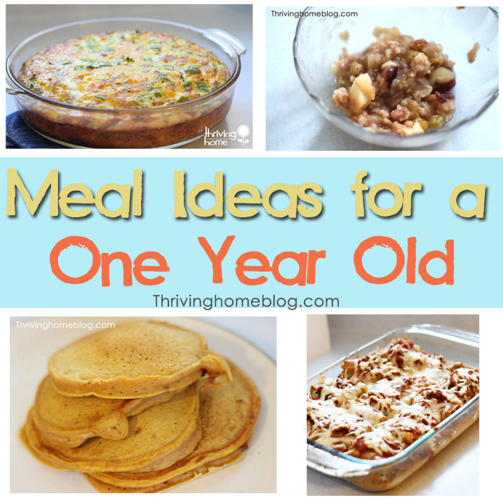 Healthy Snacks For 1 Year Old  Healthy Recipe Ideas for a e Year Old