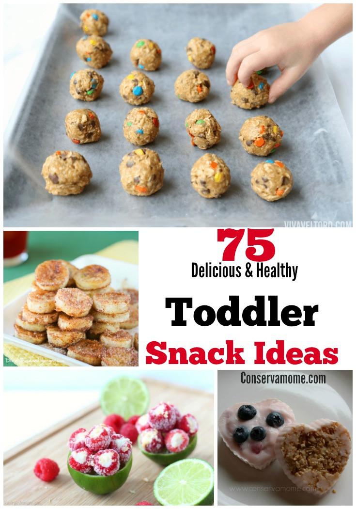 Healthy Snacks For Babies  75 Delicious & Healthy Toddler Snack Ideas ConservaMom