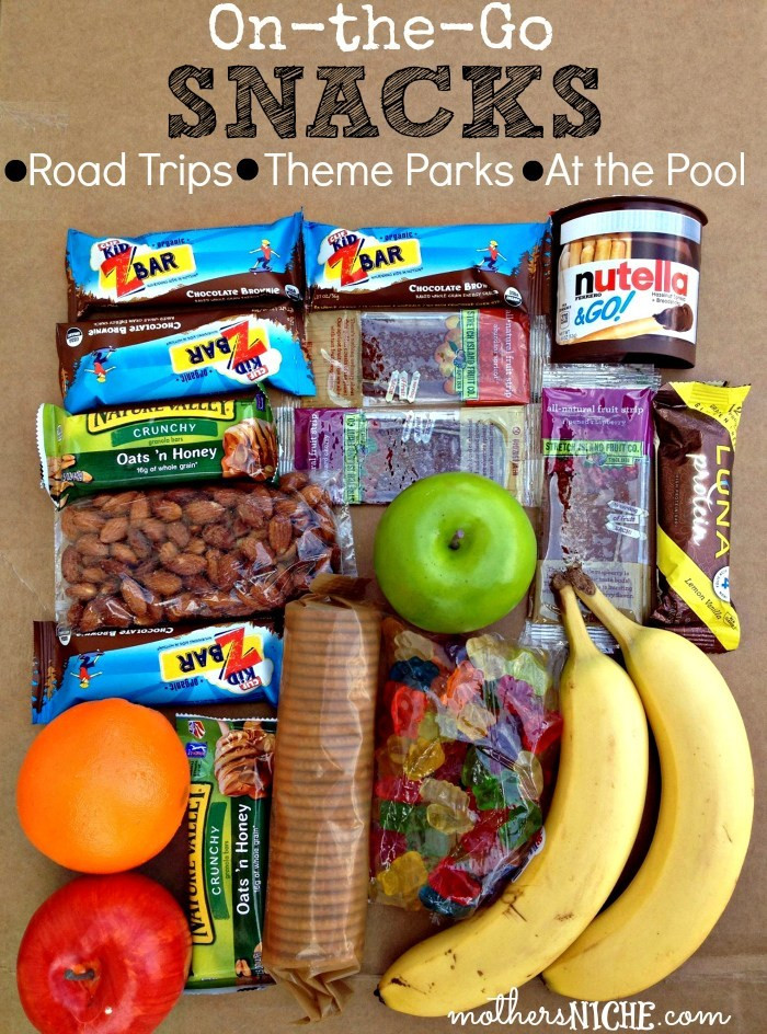 Healthy Snacks For Car Trips  the Go Snacks for Kids and adults