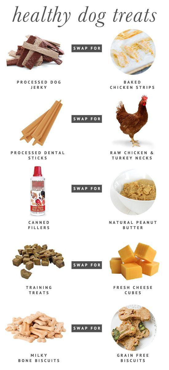Healthy Snacks For Dogs  5 Fresh & Healthy Dog Treat Alternatives