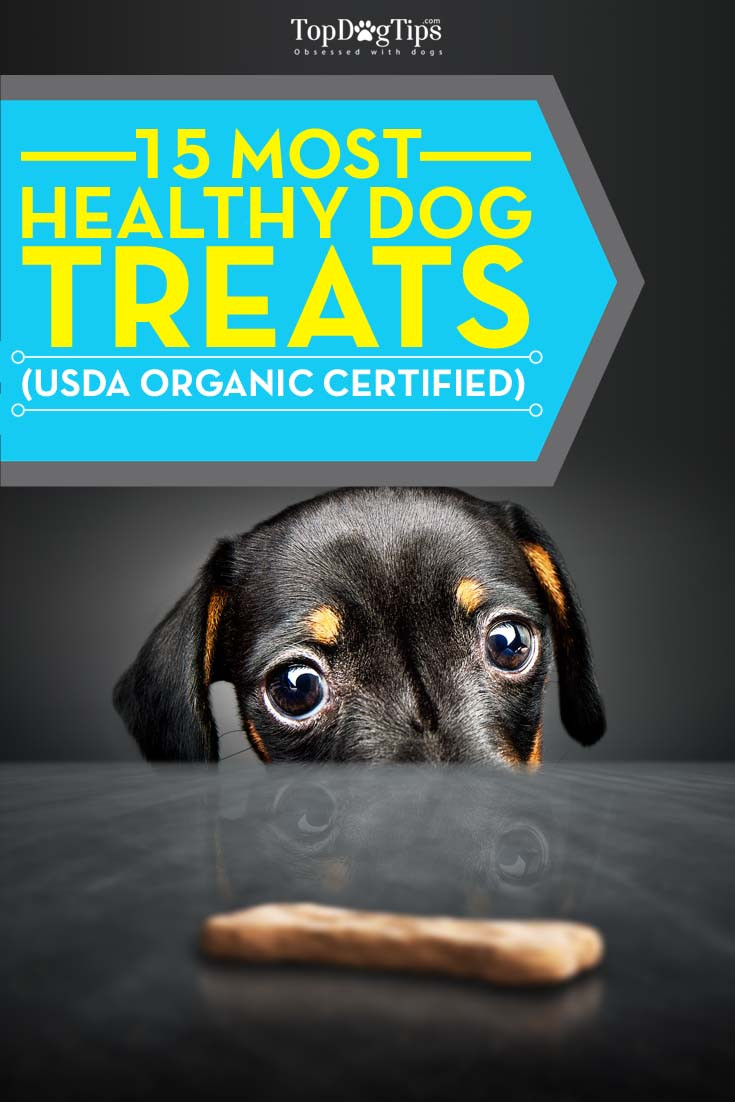 Healthy Snacks For Dogs  Top 15 Best Healthy Treats for Dogs 2016 USDA Organic
