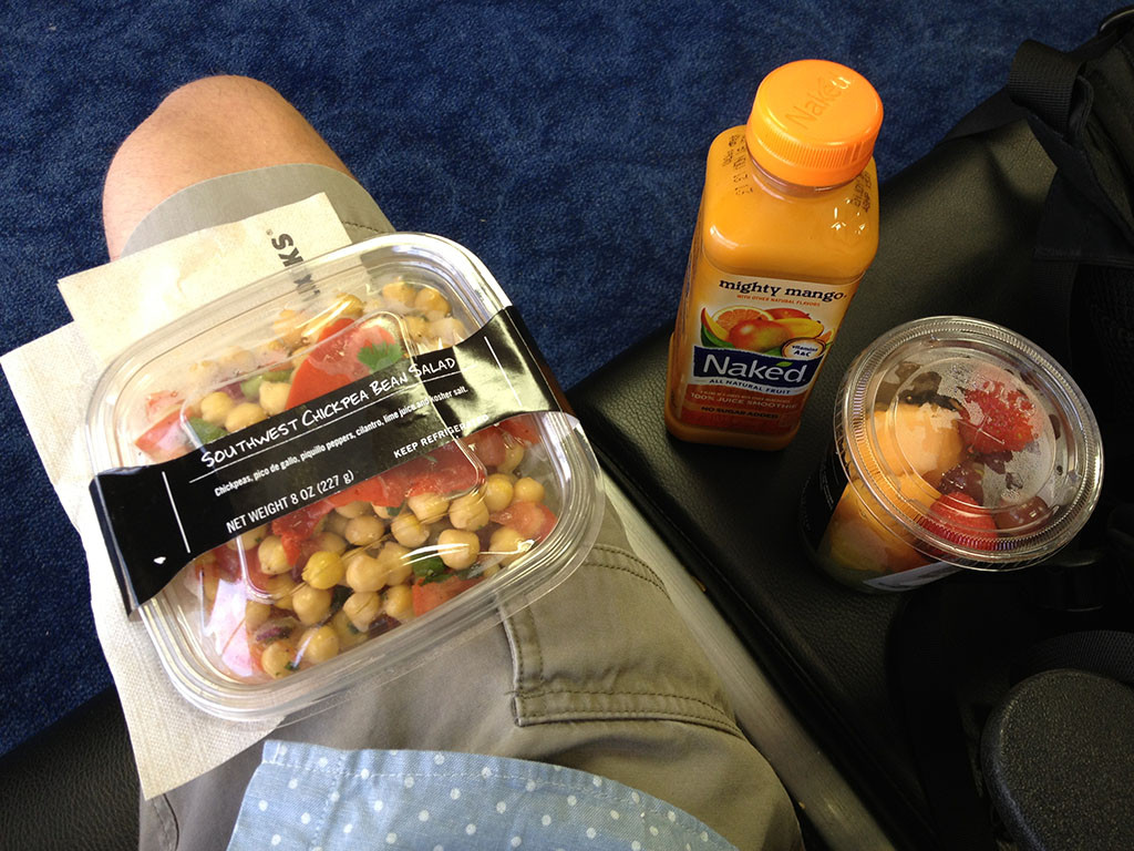 Healthy Snacks For International Flights  Trip Report American Airlines economy class Dallas to