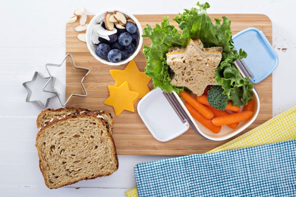 Healthy Snacks For Kids Lunch Boxes  20 Lunch Box and Snack Ideas for Kids
