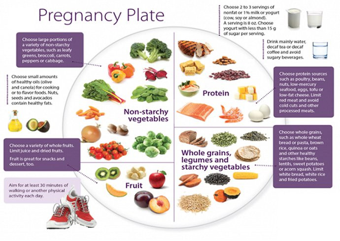 Healthy Snacks For Pregnancy First Trimester  A Crash Course What To Eat During Pregnancy