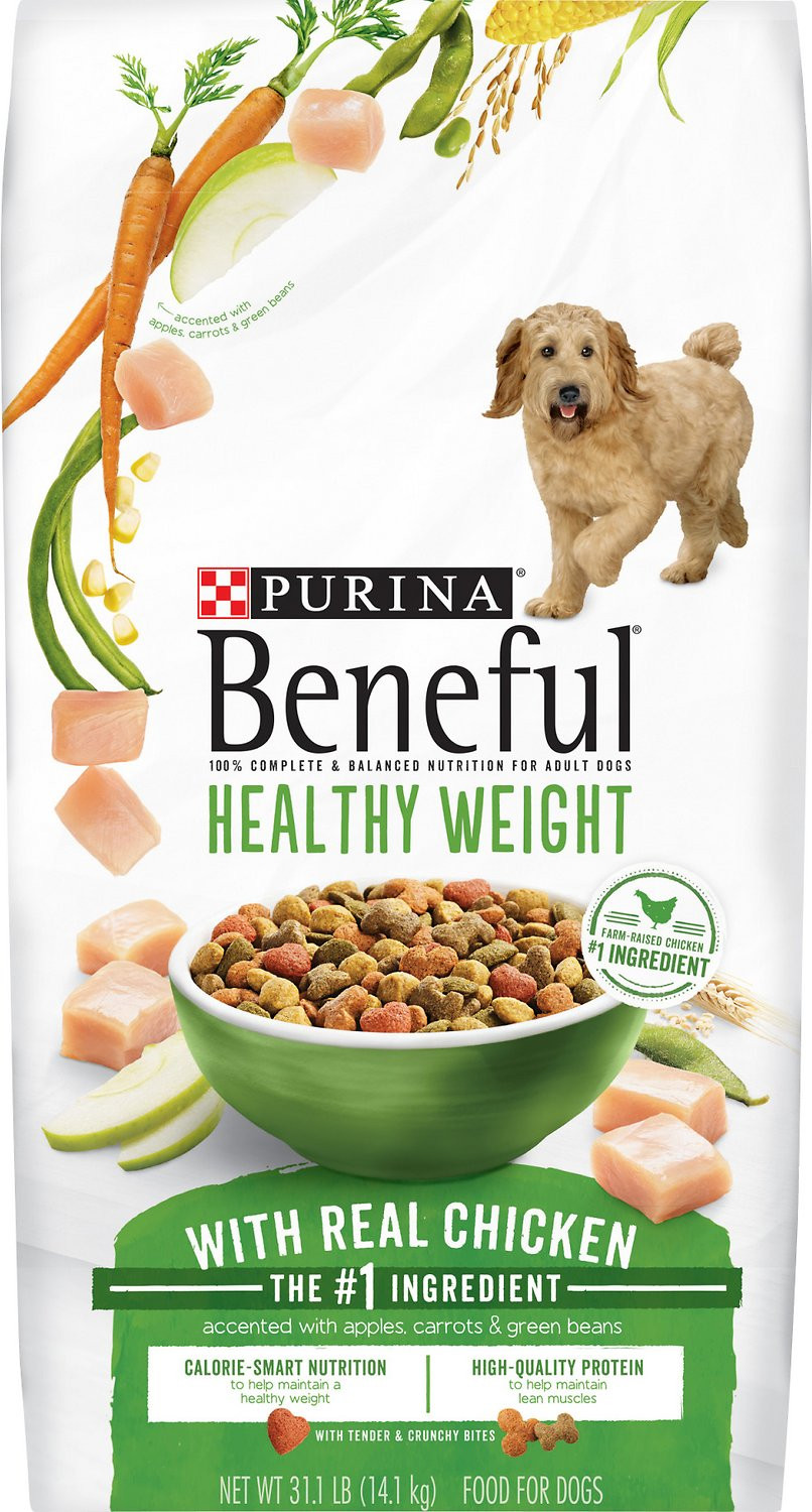 Healthy Snacks For Puppies  Purina Beneful Healthy Weight with Real Chicken Dry Dog