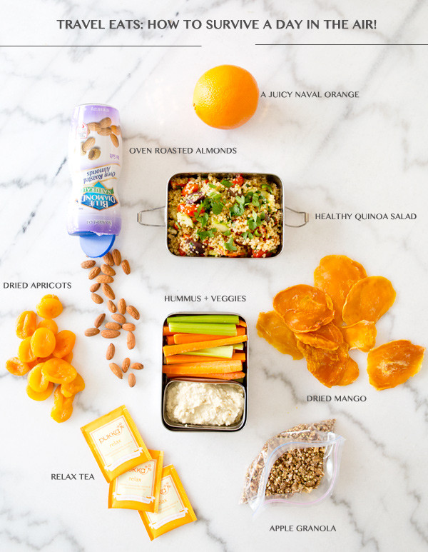 Healthy Snacks For Traveling  travel eats how to survive a day in the air – A House in