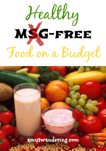 Healthy Snacks On A Budget  Healthy MSG free Food on a Bud Amy s Wandering