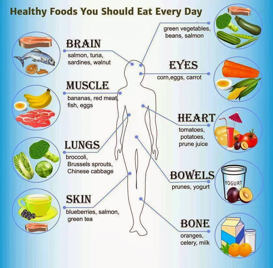 Healthy Snacks To Eat During The Day  How to Eat Healthily Everyday